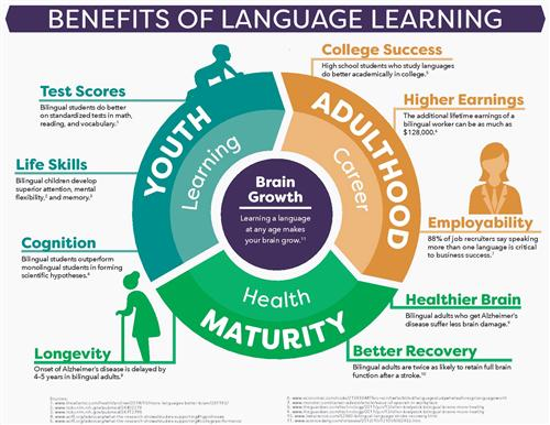 lang learning benefits